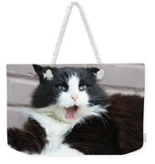 Amazement Cat Timothy Weekender Tote Bag