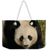 Amazing Face Of A Beautiful Giant Panda Bear Weekender Tote Bag