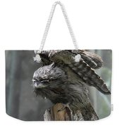 Amazing Frogmouth Bird With His Wings Extended Weekender Tote Bag