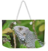 Amazing Gray Iguana Sitting In The Top Of A Bush Weekender Tote Bag