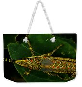 Amazing Insect Weekender Tote Bag