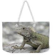 Amazing Posing Gray Iguana Perched On A Log Weekender Tote Bag