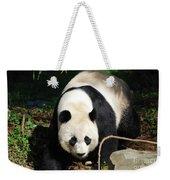 Amazing Sweet Chinese Giant Panda Bear Walking Around Weekender Tote Bag