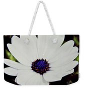 Amazing White African Daisy Weekender Tote Bag