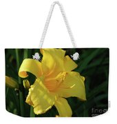 Amazing Yellow Lily Flowering In A Garden Weekender Tote Bag