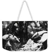 Amazon: Anteater Weekender Tote Bag