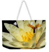 Amber Dragonfly Dancer Too Weekender Tote Bag