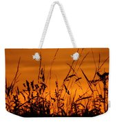 Amber Sundown Meadow Grass Silhouette  Weekender Tote Bag