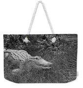 American Alligator 2 Bw Weekender Tote Bag