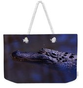 American Alligator Sleeping Weekender Tote Bag