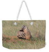 American Badger Cub Climbs On Its Mother Weekender Tote Bag