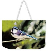 American Blue Jay On Alert Weekender Tote Bag