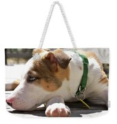 American Breed Puppy Weekender Tote Bag