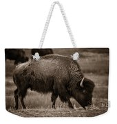 American Buffalo Grazing Weekender Tote Bag