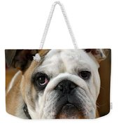 American Bulldog Weekender Tote Bag