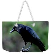 American Crow In Thought Weekender Tote Bag