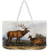American Elk, 1846 Weekender Tote Bag