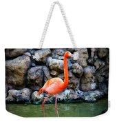 American Flamingo Weekender Tote Bag
