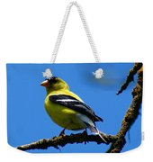 American Goldfinch 1 Weekender Tote Bag