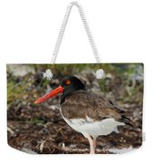 American Oyster Catcher Weekender Tote Bag