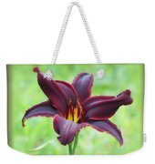 American Revolution With Vignette - Daylily Weekender Tote Bag