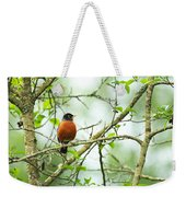American Robin On Tree Branch Weekender Tote Bag