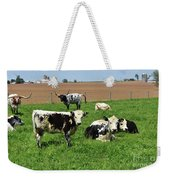 Amish Farm With Spotted Cows And Cattle In A Field Weekender Tote Bag