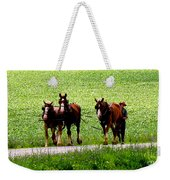 Amish Horse Team Weekender Tote Bag