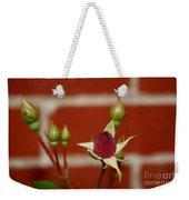Among Others Weekender Tote Bag