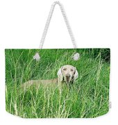 Among The Grasses Weekender Tote Bag