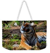 Amur Tiger 6 Weekender Tote Bag