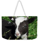 Amy's Lamb Weekender Tote Bag