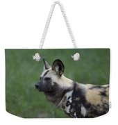 An African Hunting Dog Weekender Tote Bag