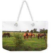 An Afternoon With Friends Weekender Tote Bag