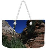 An Agave Plant In The Desert Landscapt Weekender Tote Bag