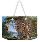 An Ancient Beech Tree Weekender Tote Bag