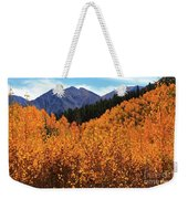 An Autumn View 2 Weekender Tote Bag