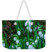 An Early Spring Weekender Tote Bag
