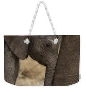 An Elephant Calf Finds Shelter Amid Weekender Tote Bag
