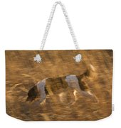 An English Springer Spaniel Points Weekender Tote Bag
