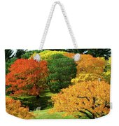 An Explosion Of Color Weekender Tote Bag