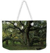 An Old Live Oak Draped With Spanish Weekender Tote Bag