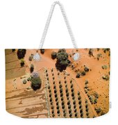An Olive Grove Between The Succulent Weekender Tote Bag