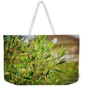 An Olive Tree Weekender Tote Bag