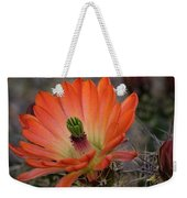 An Orange Beauty Of A Hedgehog  Weekender Tote Bag