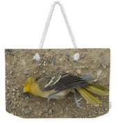 An Orchard Oriole On A Gravel Road Weekender Tote Bag