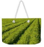 An Organic Carrot Field Weekender Tote Bag