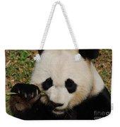 An Up Close Look At A Giant Panda Bear Weekender Tote Bag