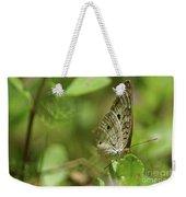 Anartia Butterfly In Wonderland  Weekender Tote Bag