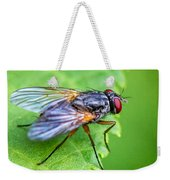 Anatomy Of A Pest Weekender Tote Bag